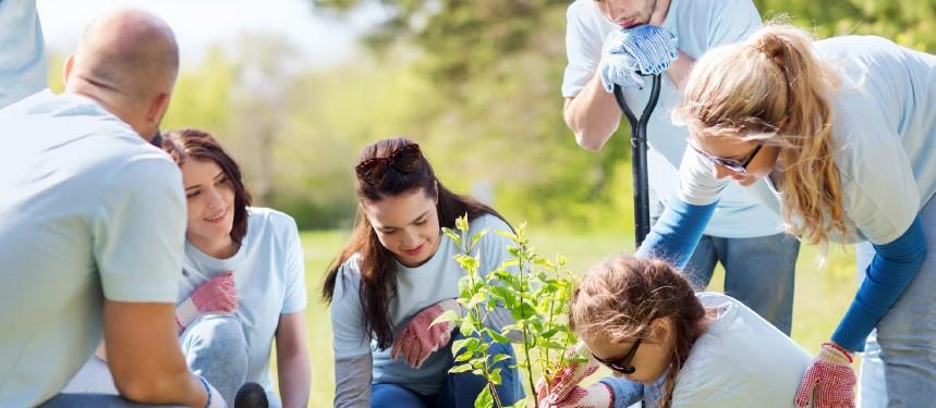 BHIB-Charities-Insurance-COVID-19-Charity-Reopening-Checklist