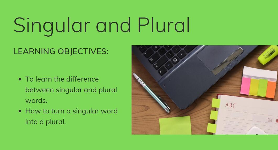 ESOL Singular and plurals